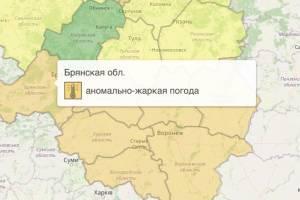 На Брянщине из-за жары объявили оранжевый уровень опасности