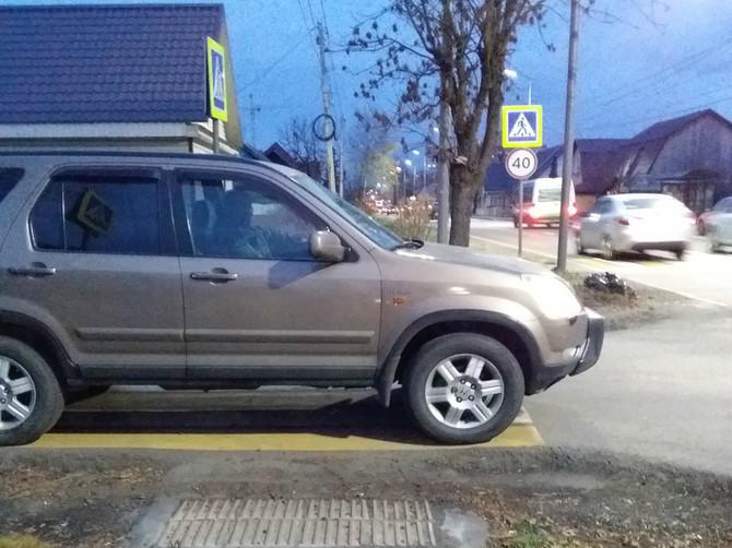 В Брянске автохам перегородил «зебру» на пути у пешеходов