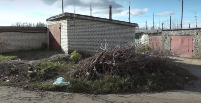 В Брянске на Ново-Советской за 10 месяцев нашли 3 растерзанных тела