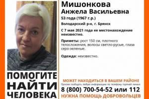 На Брянщине продолжаются поиски пропавшей 53-летней Анжелы Мишонковой