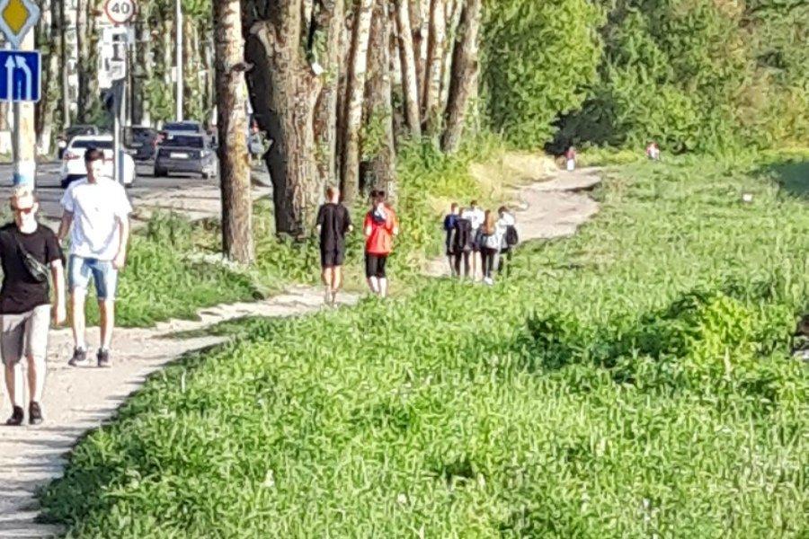 Жители Брянска попросили обустроить пешеходную зону до ТЦ «Аэропарк»