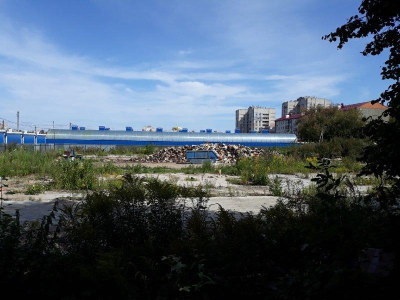 В появлении огромной свалки в центре Брянска обвинили руководство Центрального рынка