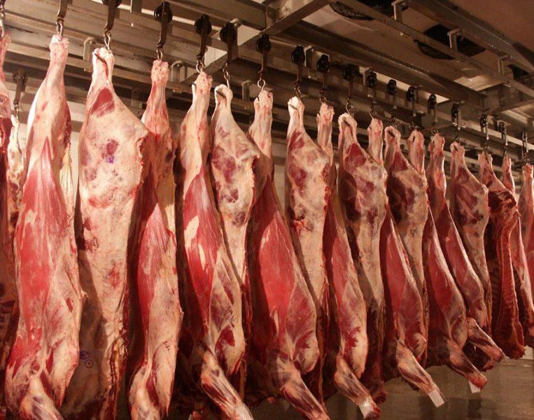 Брянщина за полгода экспортировала шесть тысяч тонн мяса