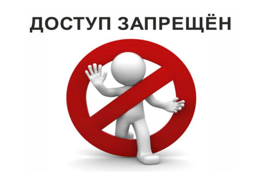 Новозыбковская прокуратура закрыла 25 сайтов с фальшивыми документами