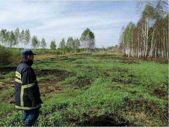 Брянской области угрожают торфяные пожары