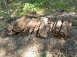 В Карачевском районе нашли мину и 22 артиллерийских снаряда