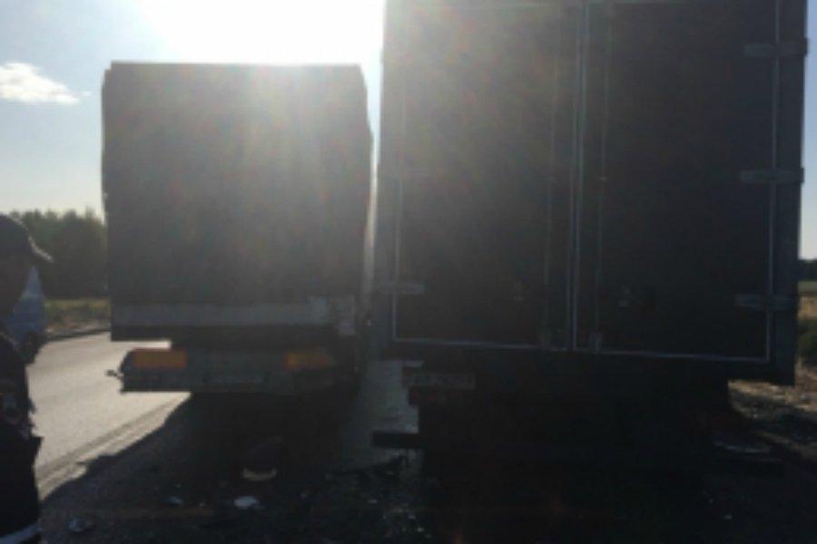 В жутком ДТП под Унечей погиб 48-летний водитель фуры