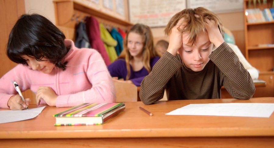 Дубровских школьников оставили без учебников