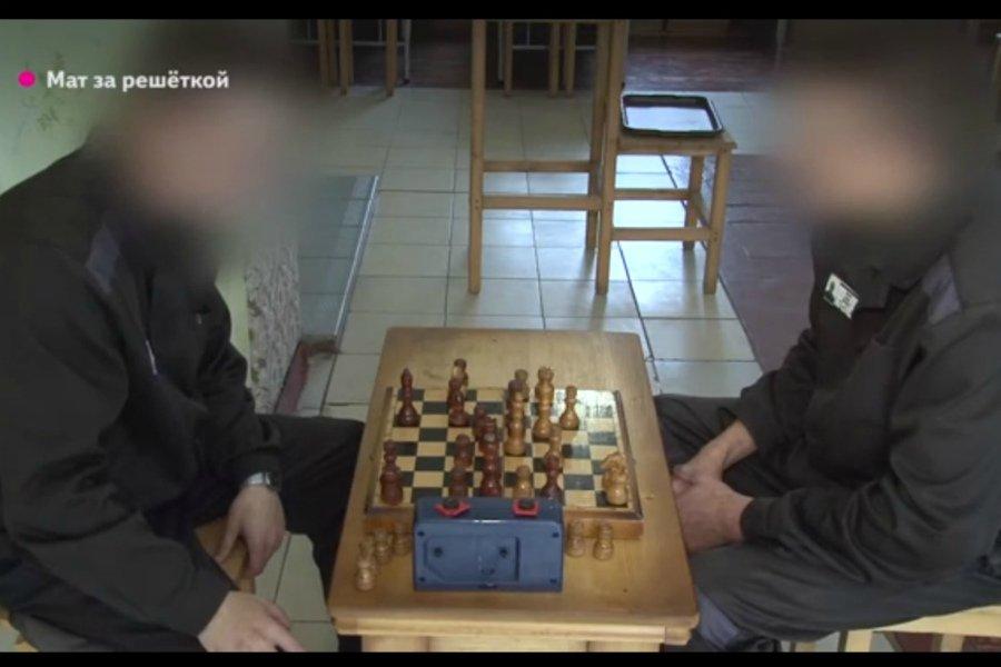 Мат за решеткой: брянский зэк лидирует в мировом турнире по шахматам