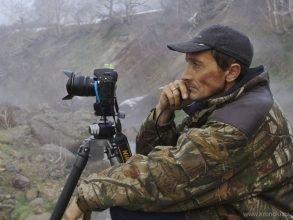 Брянский фотограф Шпиленок рассказал о стремительном истреблении русского леса