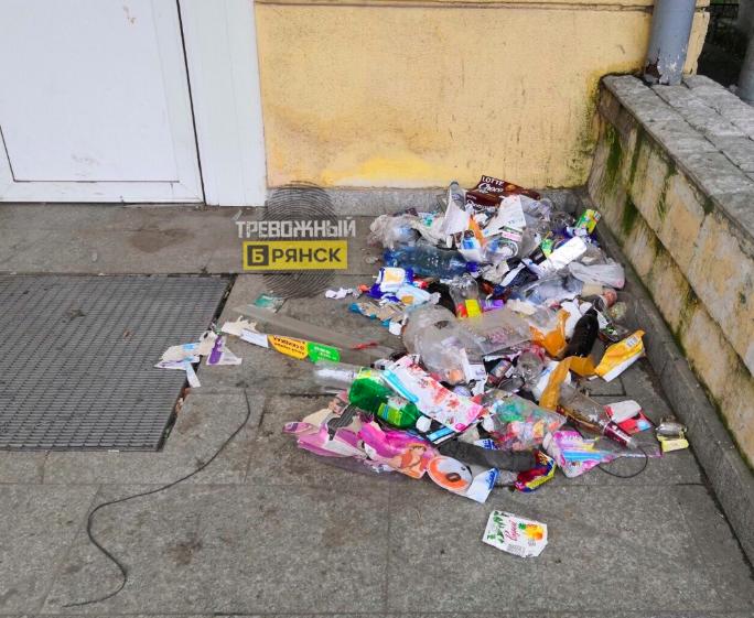 В Брянске зарастает мусором закрытый супермаркет «Журавли»