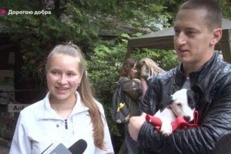 «Нет» жестокости: брянцы подарили второй шанс на жизнь бездомным животным