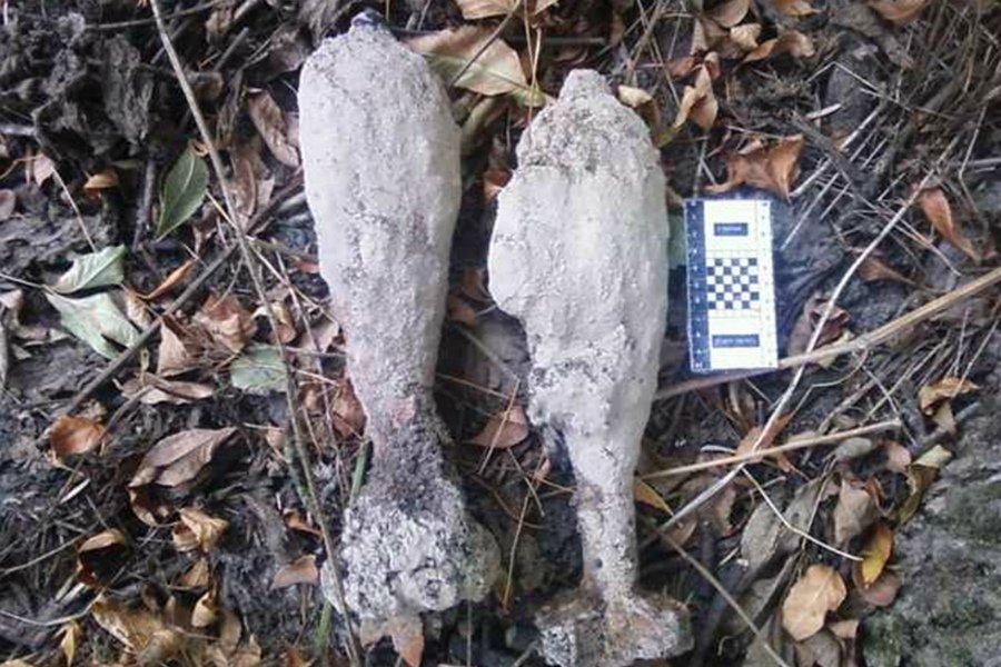 В лесу рядом с брянским поселком нашли две мины времен войны