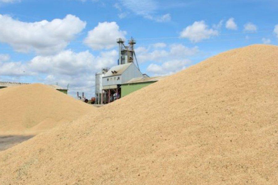 Под Комаричами заработал еще один зерносушильный комплекс