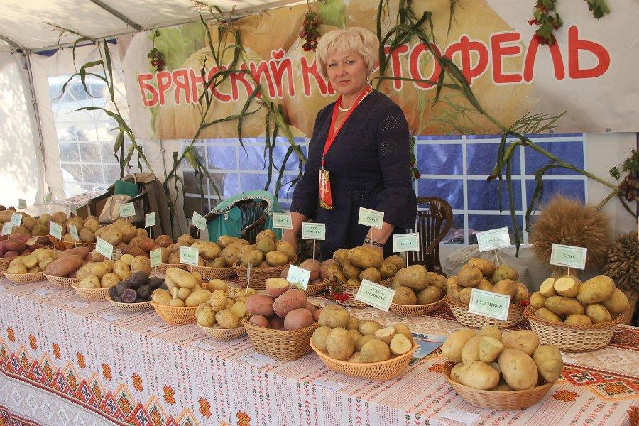 На Свенской ярмарке выбрали лучшее блюдо из брянского картофеля