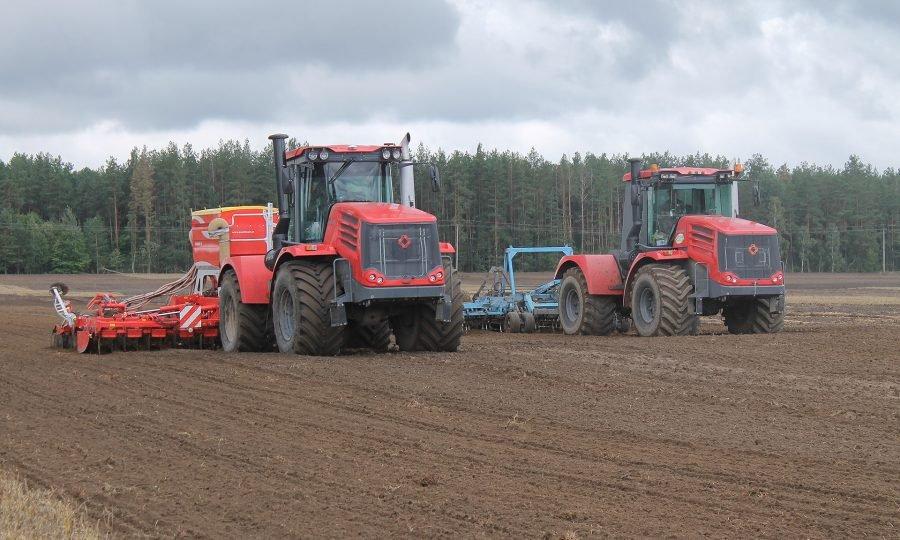 Брянские аграрии планируют ежедневно засевать озимыми 8 гектаров