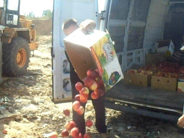 В Брянской области раздавили полтонны подозрительных яблок