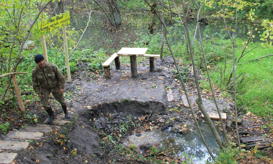 На Брянщине стартовала акция по сохранению лесных родников