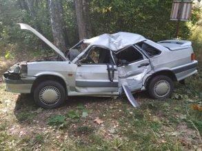 Под Стародубом водитель «ВАЗ» врезался в дерево из-за лося и сломал позвоночник