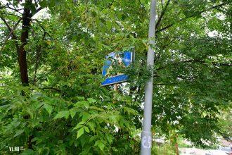 В Брянске разглядели скрытый пешеходный переход