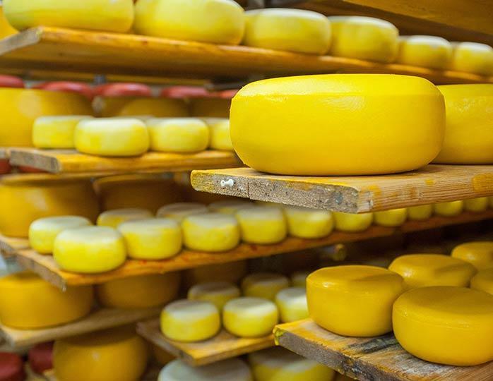 В Брянске обнаружили 3,5 тонны левого сыра