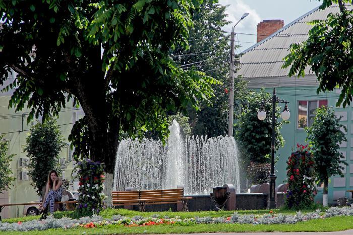 Единственный в городе фонтан отремонтируют в Новозыбкове