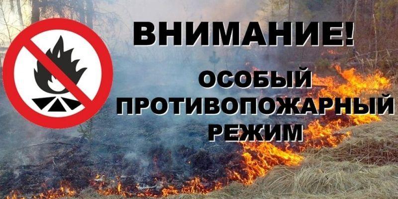 На Брянщине ввели особый противопожарный режим