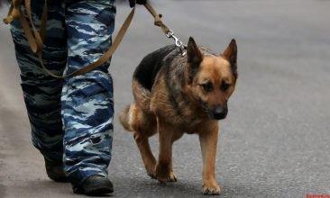 В Брянске искали бомбу на остановке «Кремний»