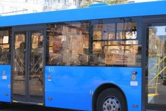 В Брянске ребенок ищет потерянные в автобусе игрушки