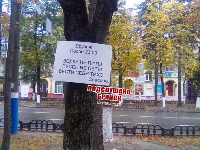 В Брянске на Куйбышева деревья призвали шумных горожан к порядку
