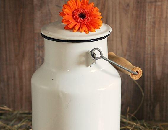 В Брянске депутаты решили проверить качество молока в молокоматах