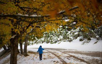 Снег и заморозки придут на Брянщину в середине октября