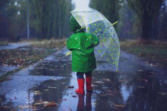 В Брянске снова обещают дождливую погоду