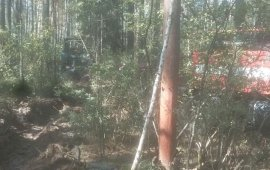 Вблизи Брянска больше 4 часов тушили лесной пожар
