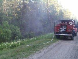 Под Суземкой весь день тушили лесной пожар