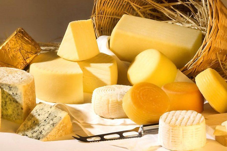 Брянская область вошла в топ-3 регионов по объемам производства сыра