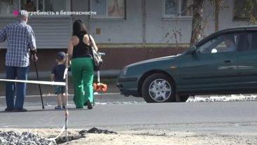 Жители Брянска пожаловались на отсутствие зебр в городе