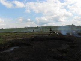 В Карачевском районе возник пожар на торфянике