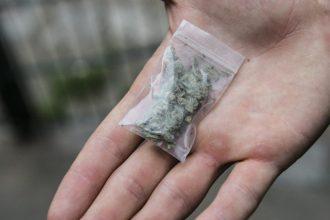 Житель Клетни за продажу марихуаны получил 3 года строгача