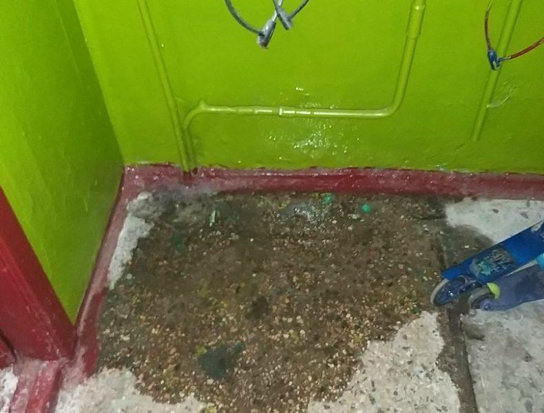 На потоп жалуются жители многоквартирного дома в Брянске