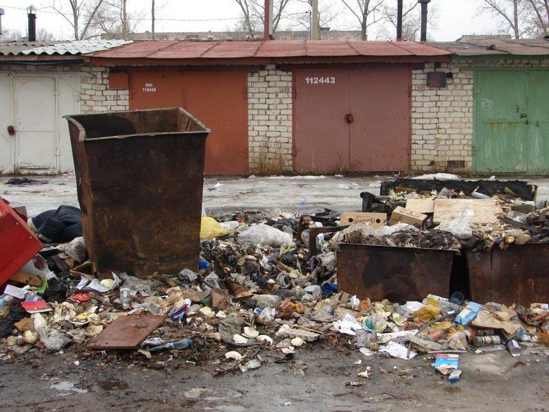 Брянских чиновников заставили убрать свалки в Бежице
