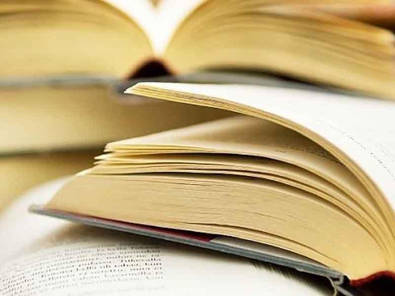 Брянские поэты отправятся на литературный фестиваль в Гомель