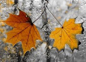 В Брянске в среду похолодает до 3 градусов