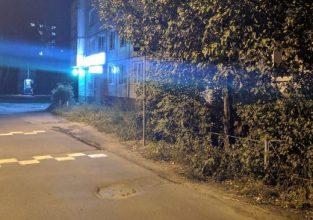В Брянске знак «лежачий полицейский» спрятался в кусты