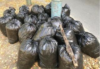 В Брянске из сквера на улице Королева выгребли 20 мешков мусора