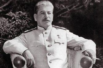 Скандальный брянский блогер сравнил губернатора со Сталиным