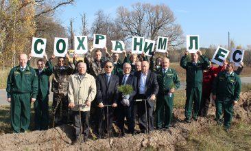 В Брянской области продолжается масштабная акция «Сохраним лес»