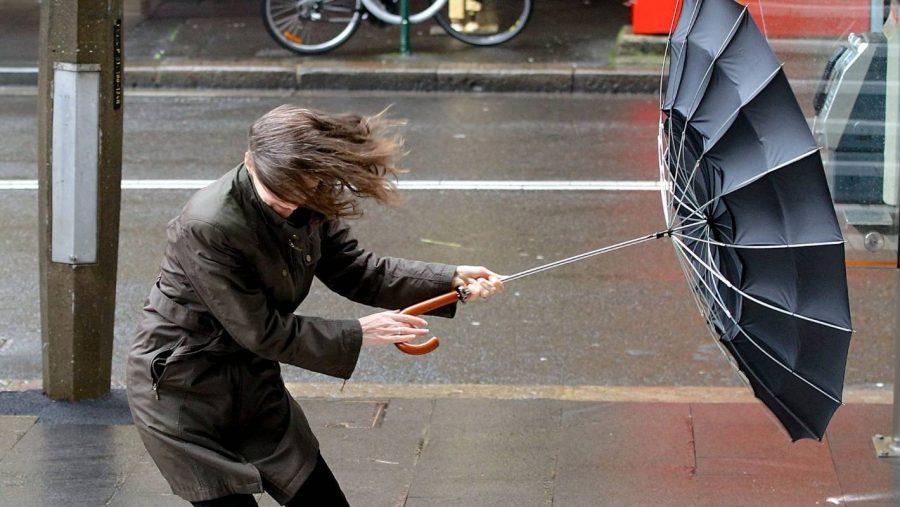 Брянцам 10 октября обещают дождь и сильный ветер