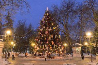 В Брянске разыскивают главную новогоднюю ель города