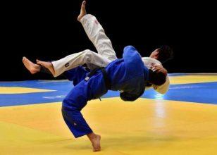 Брянцы завоевали 10 медалей турнира ЦФО по дзюдо